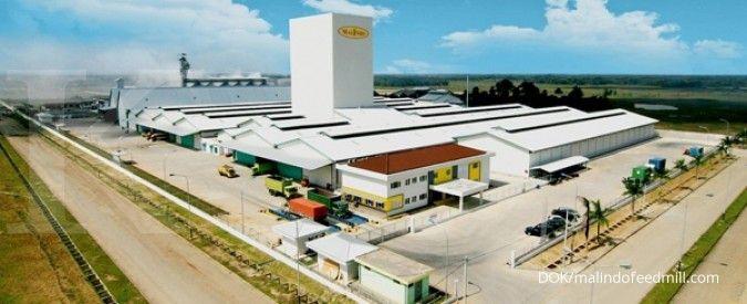Kinerja kuartal I-2021 ciamik, Malindo Feedmill (MAIN) optimistis hadapi tahun ini