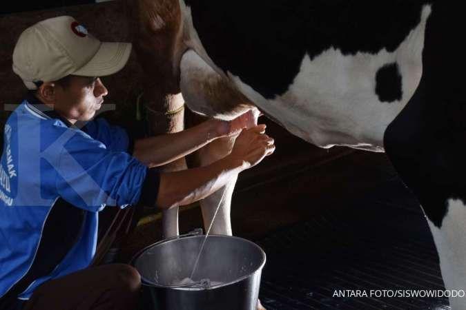 Susu sapi adalah salah satu alergi makanan yang biasanya dimiliki seseorang.