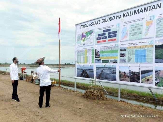Jokowi minta kepala daerah percepat izin food estate
