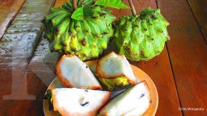 6 Manfaat buah srikaya untuk kesehatan tubuh