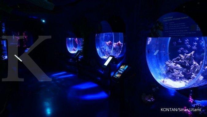 Catat! Ini harga tiket masuk Jakarta Aquarium yang lagi hits