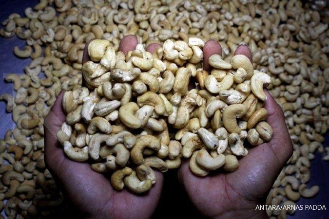 Kacang mete termasuk salah satu makanan yang mengandung zat besi.