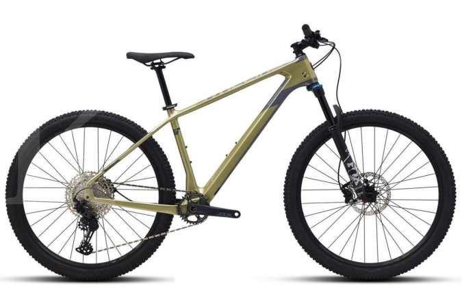 Sepeda gunung Polygon Syncline C5