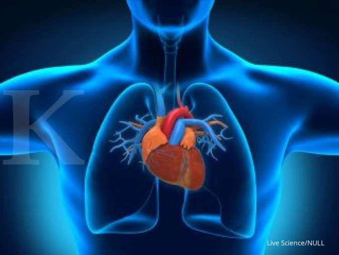 Salah satu manfaat donor darah adalah menurunkan risiko serangan jantung.