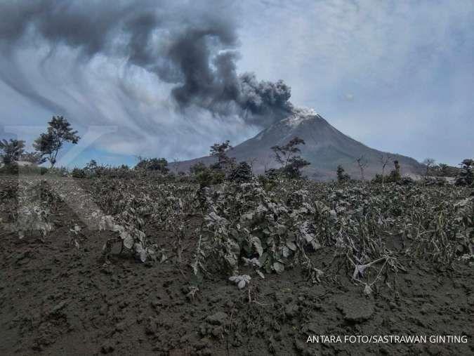 Gunung Sinabung erupsi tiga kali, kolom abu setinggi 1.000 meter