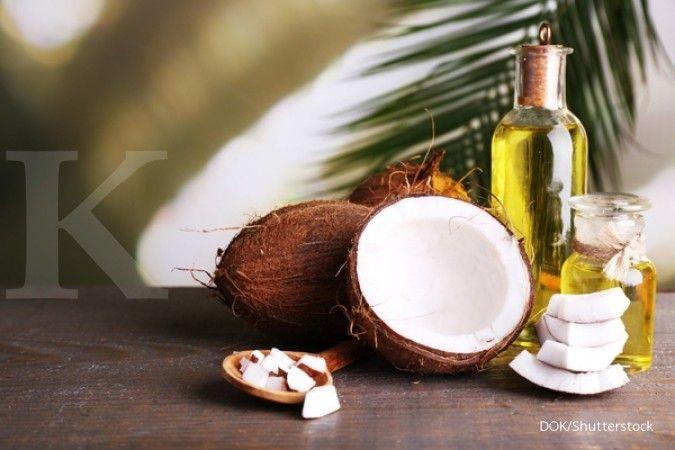 Cara menghilangkan kutu rambut bisa Anda lakukan dengan minyak kelapa.