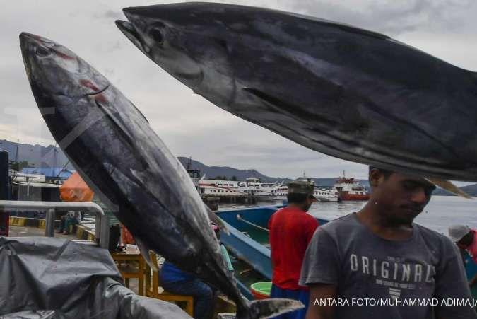 Optimalkan tangkapan tuna, pemancing dan nelayan bisa gunakan aplikasi laut nusantara