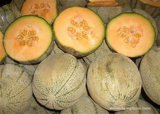 Kaya nutrisi, inilah 5 manfaat buah melon yang layak Anda dapatkan