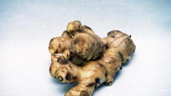 Wow! Ini bahan herbal yang ampuh menangkal batuk, pilek, dan flu