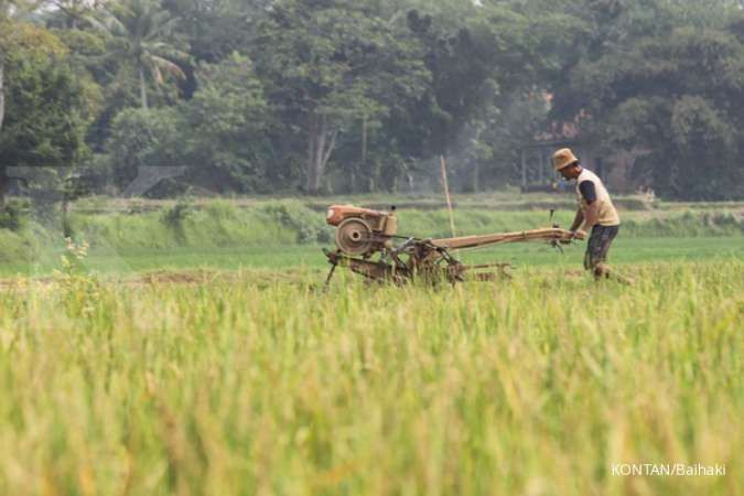 Sektor pertanian terbukti mampu berkontribusi terhadap ketahanan ekonomi nasional. Terdapat 5 hal yang harus dilakukukan saat Indonesia resesi.