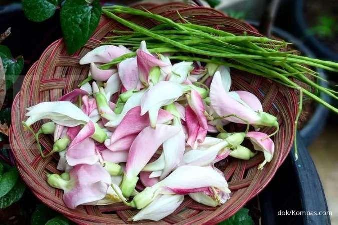 Tidak hanya menurunkan darah tinggi, ini manfaat bunga turi untuk kesehatan