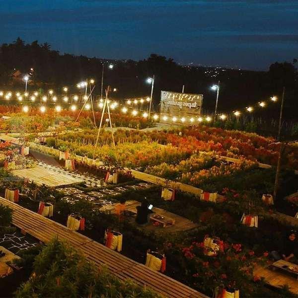 Tapos Garden, kafe yang penuh hamparan bunga warna-warni di Bogor