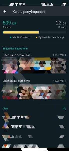 Fitur kelola penyimpanan di WhatsApp