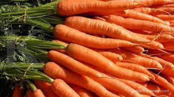Wortel bermanfaat menurunkan risiko penyakit jantung, bila dimakan secara rutin