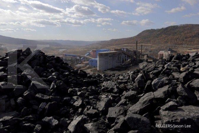 Harga batubara termal China melompat ke rekor tertinggi baru, ini pendorongnya