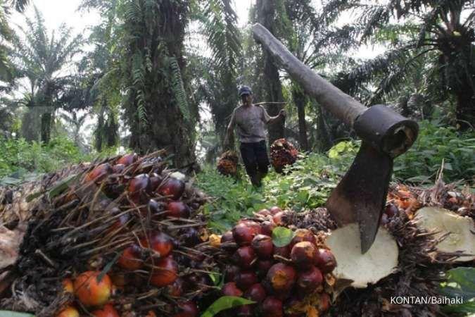 Gapki: Indonesia punya peluang menang di WTO