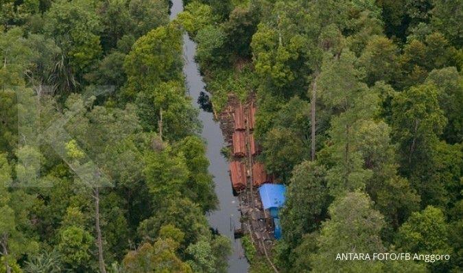 Pekerja kehutanan Riau ingin ketemu Jokowi