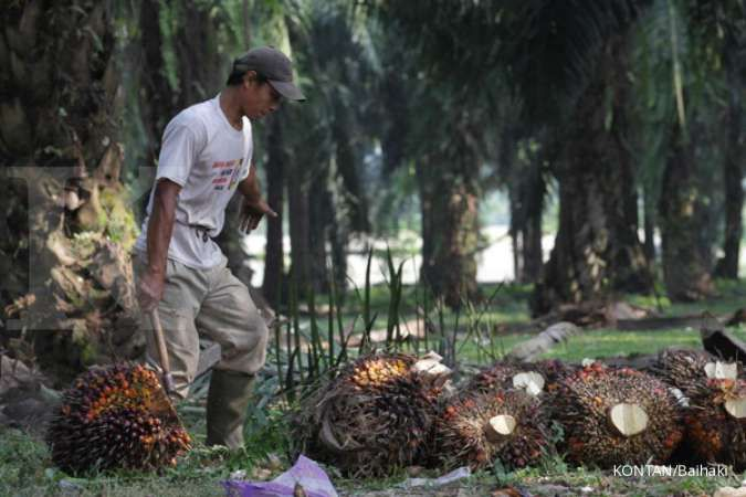 Agar mencapai keberlanjutan, petani kelapa sawit dodorong untuk bermitra
