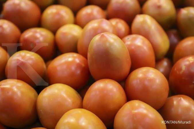 Mengonsumsi tomat bisa jadi salah satu cara mengatasi kulit kering.