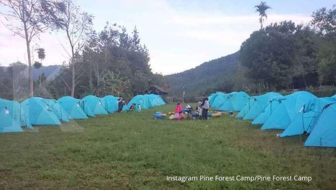 Pine Forest Camp, rekomendasi tempat berkemah di Lembang