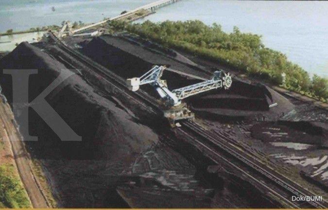Ini strategi Bumi Resources (BUMI) dongkrak kinerja di tengah volatilitas batubara