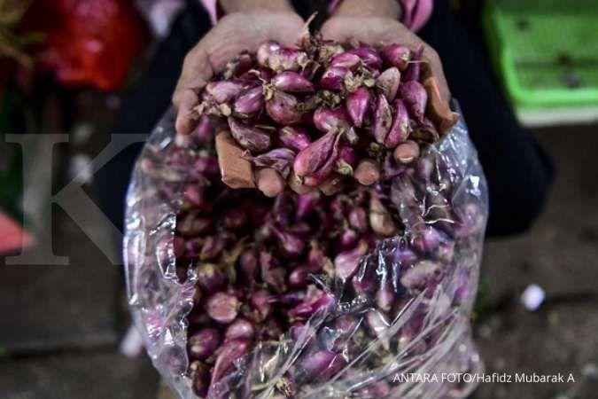 Ini loh manfaat bawang merah untuk kesehatan tubuh Anda