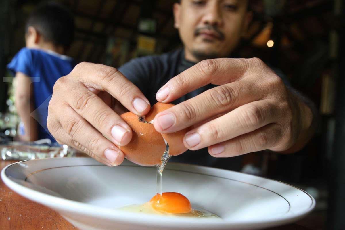 Telur organik omega