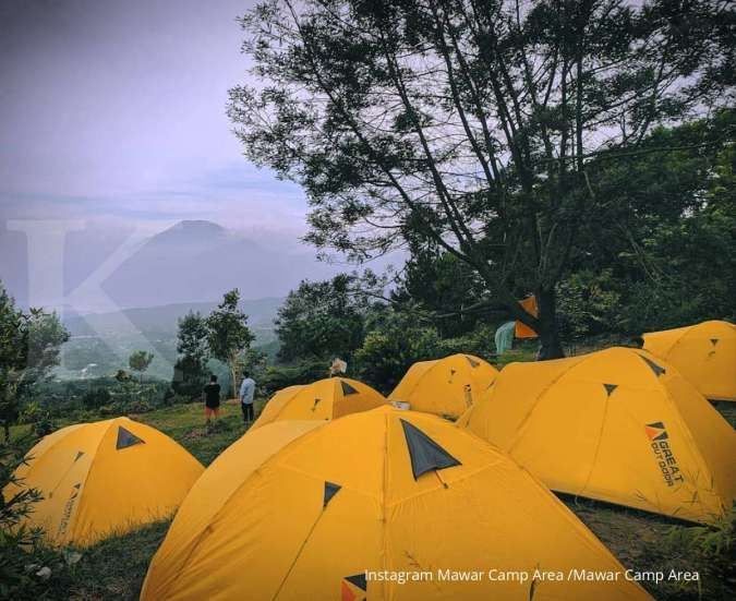 Mawar Camp Area, tawarkan sensasi berkemah dengan pemandangan hutan pinus