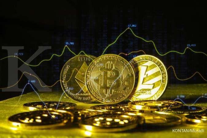 Bitcoin hingga Dogecoin tumbang, ini 10 hal penting sebelum beli kripto