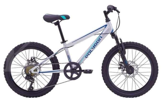 Termurah keluaran Polygon, harga sepeda gunung anak Polygon Maze 20 ringan di kantong