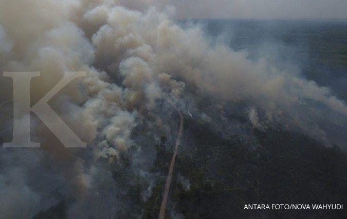 Sebanyak 6 provinsi darurat kebakaran hutan