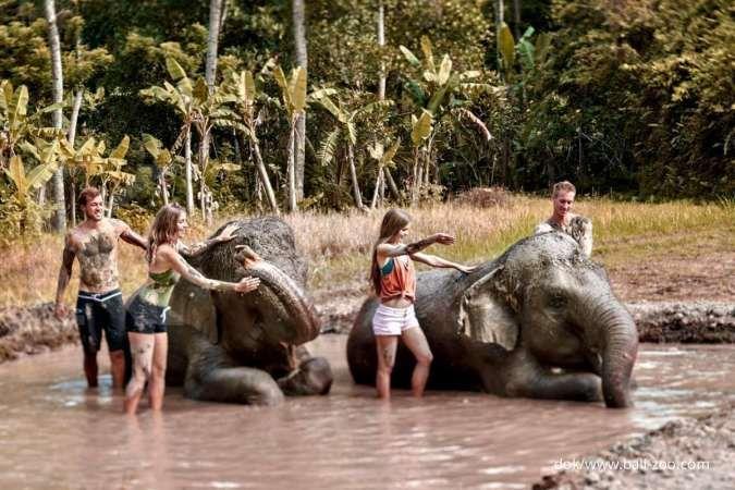 Kebun binatang Bali lagi tren, cek dulu harga tiket Bali Zoo di sini