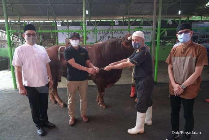 Pegadaian menyalurkan 2,5 ton daging kurban