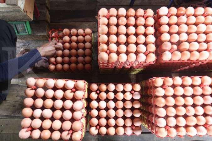 Mendag siapkan strategi agar telur ayam bisa terserap maksimal