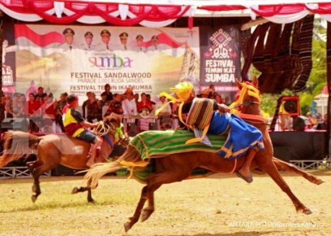Jinak & nyaman ditunggangi, kuda poni kian dicari