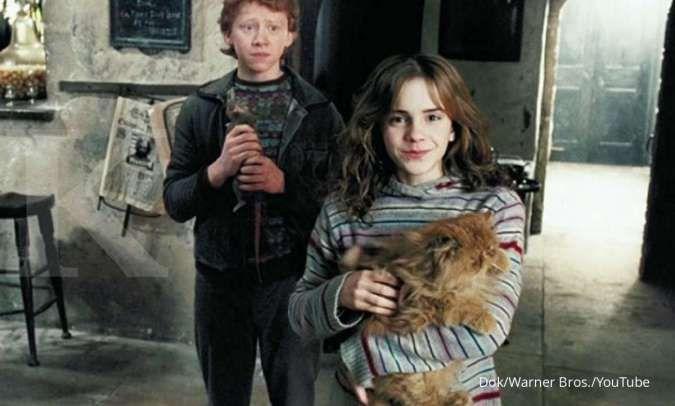 Kucing lucu Crookshanks di franchise film Harry Potter.