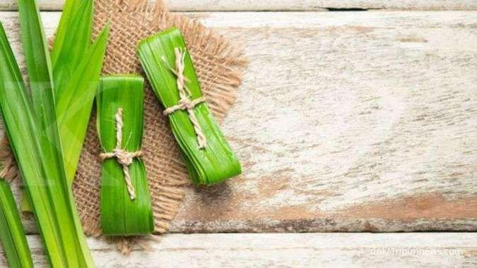 Tidak hanya harum, ini manfaat daun pandan sebagai obat herbal