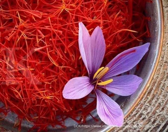 Saffron, rempah termahal di dunia yang kaya manfaat bagi kesehatan
