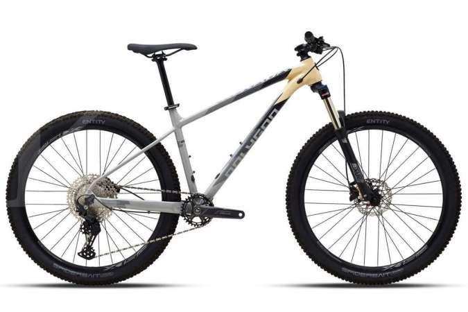 Edisi baru, ini harga sepeda gunung Polygon Xtrada 5 dan 6