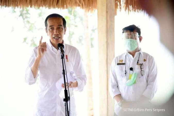 Jokowi resmi bentuk Badan Pangan Nasional, ini tugasnya