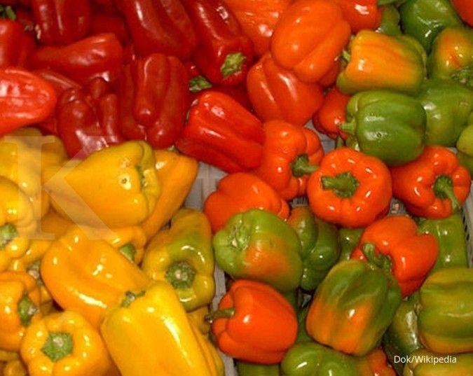 Vitamin E sebagai salah satu vitamin daya tahan tubuh bisa ditemukan dalam paprika.