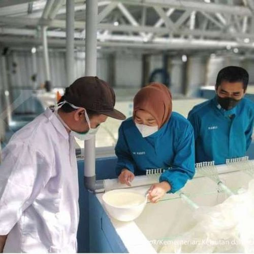 Dukungan Layanan Prima BKIPM Bikin Ekspor Sulsel Meningkat