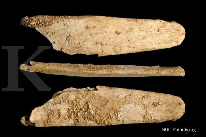 Ini buktinya, manusia purba Neanderthal lebih cerdas dari perkiraan sebelumnya