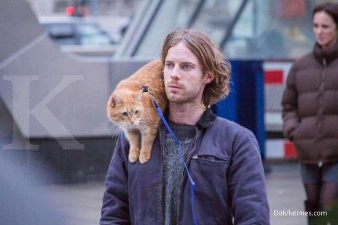 Deretan kucing lucu dan populer yang muncul di film superhero hingga animasi