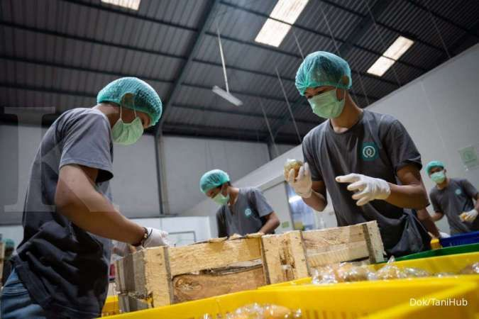 Pengamat: Layanan delivery produk segar bisa berkembang jika ekosistem terbangun baik