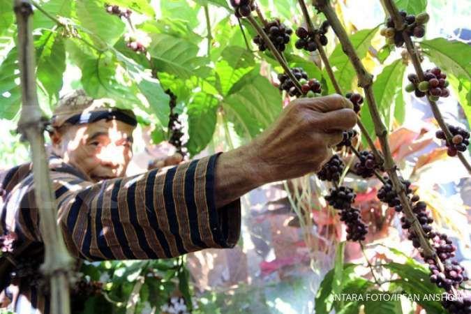 Kementan: Nilai ekspor pertanian Jawa Tengah tumbuh 19% menjadi Rp 2,51 triliun