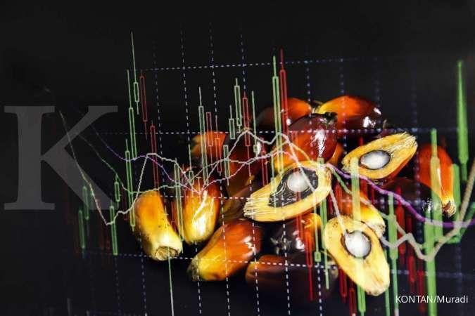Harga CPO tembus level RM 4.400 per ton, simak prospek saham-sahamnya