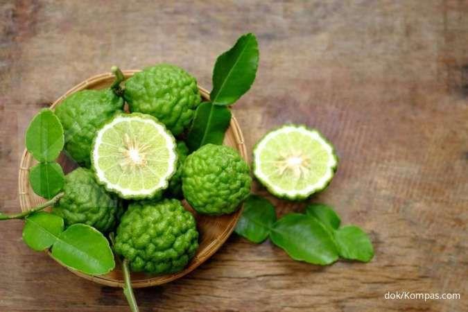 7 Manfaat jeruk purut sebagai obat herbal untuk flu sampai nyeri asam urat