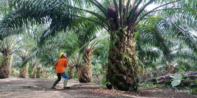 industri kelapa sawit