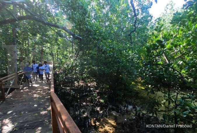 Dorong rahabilitasi mangrove, BRGM tingkatkan sosialisasi di daerah